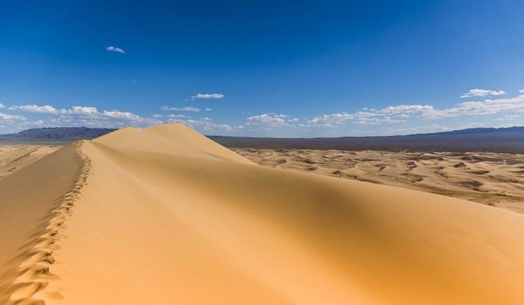 the desertpic
